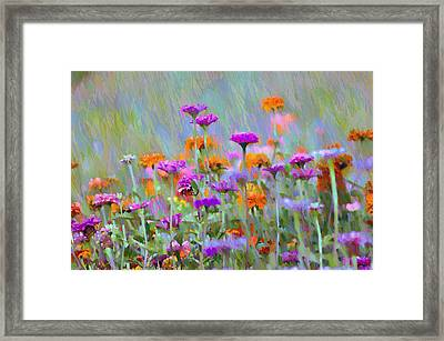 Where Have All The Flowers Gone Framed Print by Bill Cannon