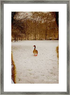 Where Is Everyone Framed Print