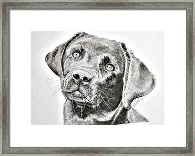 Where Is My Bone Framed Print by Janet Moss