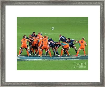 Where's The Ball?  .nz Framed Print by Jennie Breeze