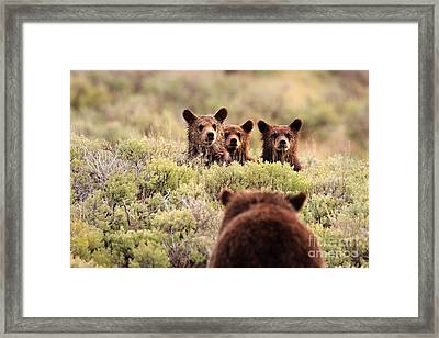 Where Is Your Brother Framed Print by Aaron Whittemore