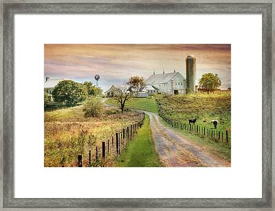 Where Life Is Found Framed Print