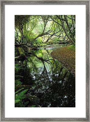 Where Magic Happens Framed Print by Donna Blackhall