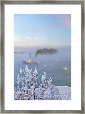 Where Morning Glories Grow Framed Print by Evelina Kremsdorf