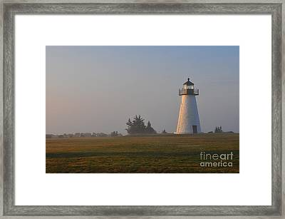 Where Peace Belongs Framed Print by Catherine Reusch Daley