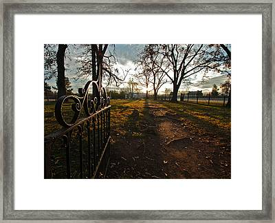 Where Rests The Weary Widow Framed Print