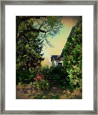 Where Shadows Dance Framed Print by Terry Eve Tanner