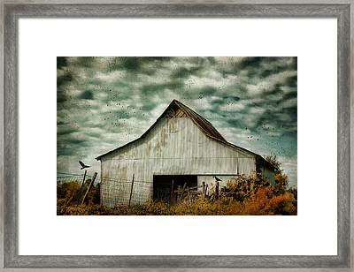 Where The Crows Roost In Autumn Framed Print