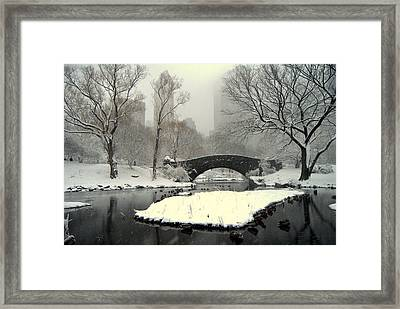 Where The  Ducks Go When It Gets All Frozen Over Framed Print