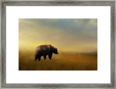 Where The Grizzly Roams Framed Print by Jai Johnson