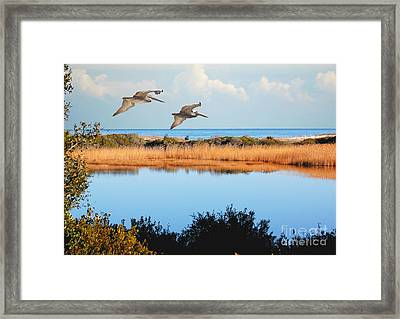 Where The Marsh Meets The Atlantic Framed Print by Kathy Baccari