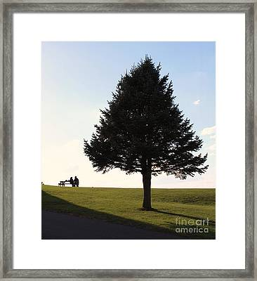 Where The Two Can Sit Framed Print