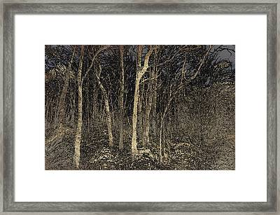 Where The Wild Things Hide Framed Print