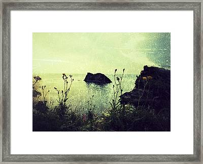 Where There Be Wilde Things  Framed Print