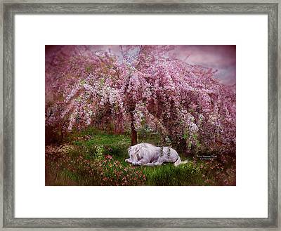 Where Unicorn's Dream Framed Print by Carol Cavalaris