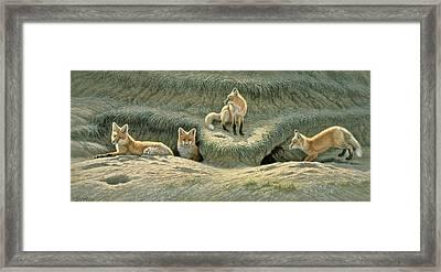 Where's Mom-fox Pups Framed Print by Paul Krapf