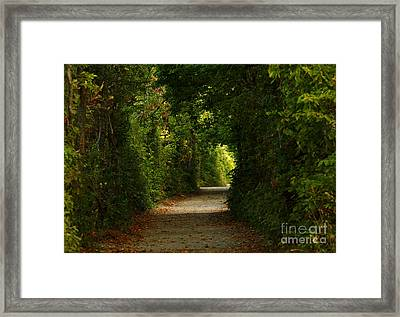Wherever The Path Leads Framed Print by Inspired Nature Photography Fine Art Photography