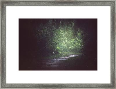 Wherever The Path May Lead Framed Print by Carrie Ann Grippo-Pike