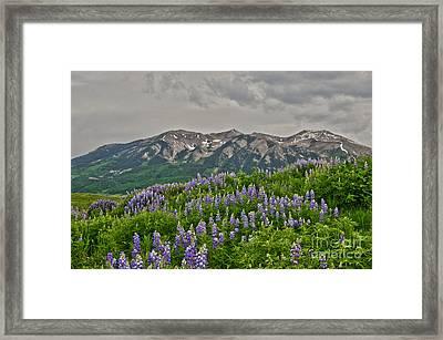 Whetstone Sunset Framed Print