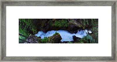 Framed Print featuring the photograph Which Way by David Andersen