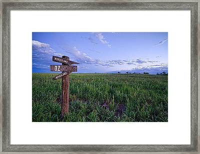 Which Way To Go Framed Print by James BO  Insogna