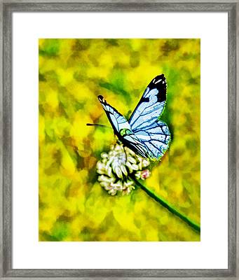 Framed Print featuring the painting Whimsical Butterfly On A Flower by Tracie Kaska