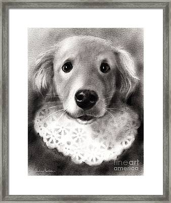 Whimsical Labrador Retriever In A Costume Framed Print by Svetlana Novikova