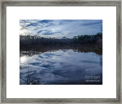 Whipped Cream Reflection Framed Print by Donna Brown
