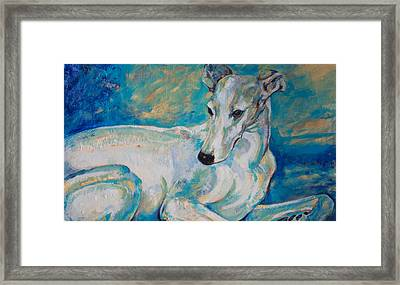 Whippet-effects Of Gravity 4 Framed Print by Derrick Higgins