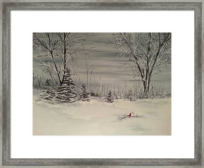 Whipple Lake Framed Print