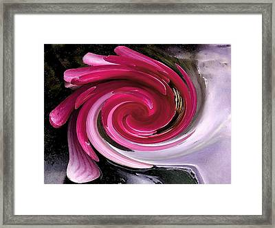 Whirlaway - Magenta Framed Print