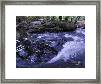 Whirls Framed Print