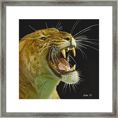 Whiskers Framed Print by Larry Linton