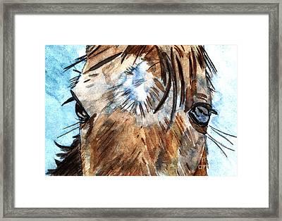 Whisper Framed Print by Elizabeth Briggs