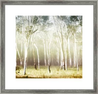 Whisper The Trees Framed Print