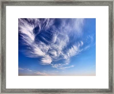 Whisper Framed Print by Tom Druin