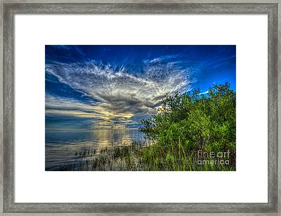 Whisper Wind Framed Print by Marvin Spates