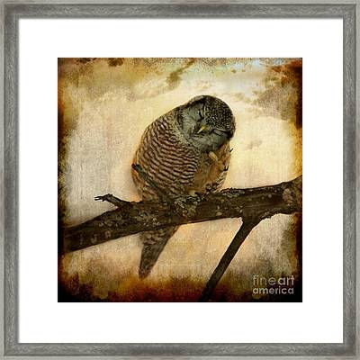 Whispered In The Sounds Of Silence Framed Print by Heather King