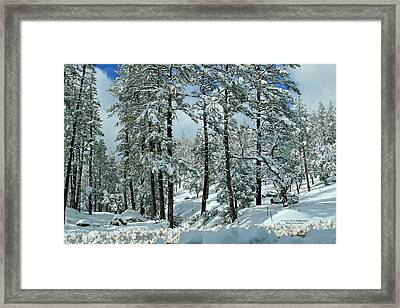 Whispering Snow Framed Print