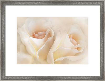 Whispers Of Peaches And Cream Roses Framed Print