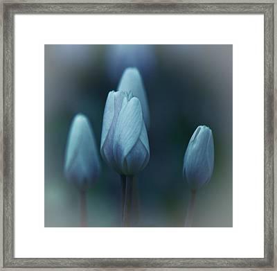 Whispers Framed Print by Simone Ochrym