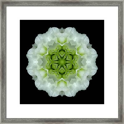 White And Green Begonia Flower Mandala Framed Print by David J Bookbinder