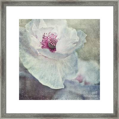White And Pink Framed Print by Priska Wettstein