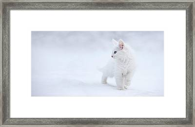 White As Snow Framed Print by Esm?e Prexus