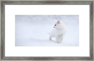 White As Snow Framed Print