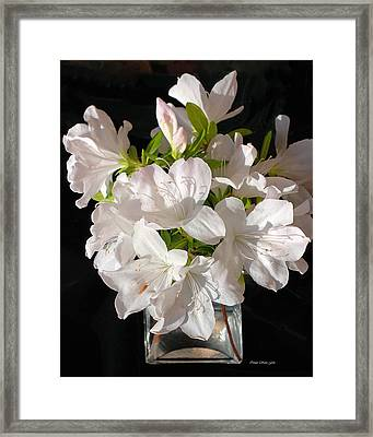 White Azalea Bouquet In Glass Vase Framed Print by Connie Fox
