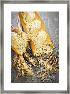 White Baguette Framed Print