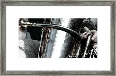 White Beard  Framed Print by Steven  Digman