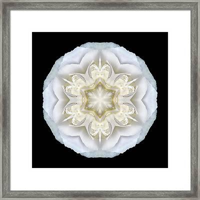 White Begonia II Flower Mandala Framed Print