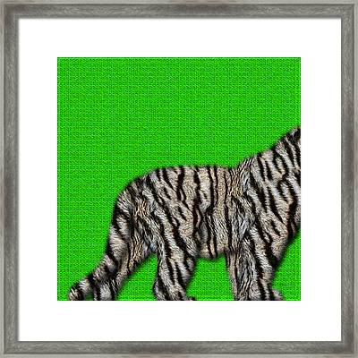 White Bengal Tiger Furry Bottom On Green Framed Print by Serge Averbukh